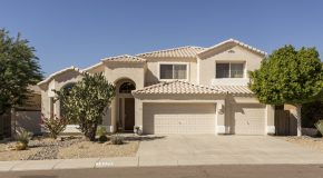 Finding a Home in Phoenix Arizona