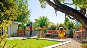 Getting Your Backyard Ready for the Summer